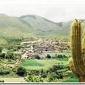 Curqui esconde la segunda reserva de cactus más importante en Sudamérica y está en Tarija