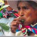 Informe: países ricos se oponen a legalizar el pijcheo