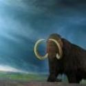 Rusia decide clonar un mamut lanudo extinguido hace 4.000 años