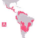 Chagas mapa