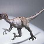Velociraptor 4