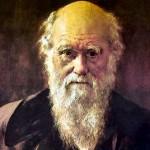 Darwin 1 XX