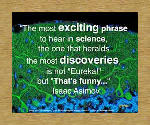 the-most-exiting-isaac-asimov